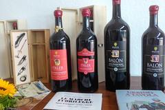 Im Weingut Bruscia