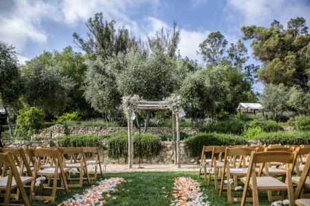 Decorated Chuppah, Natural Wood