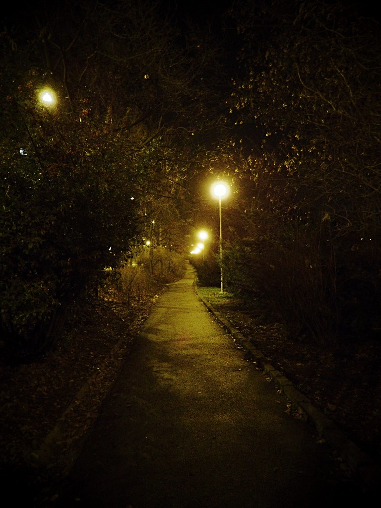 Path in the Lužánky Park at Night