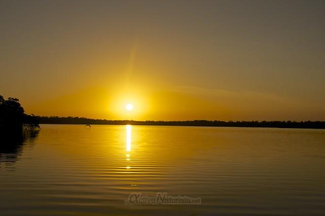 view 0005 Everglades, Florida, USA