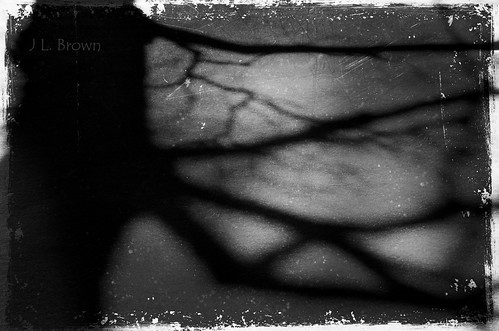 Among the Shadows by jumpinjimmyjava