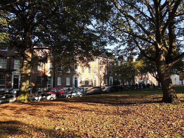 Wakefield Autumn 5