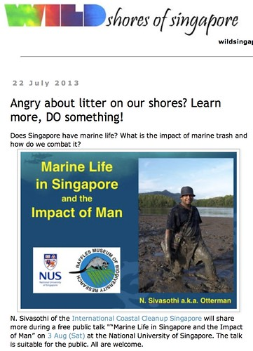 wild shores of singapore: Angry about litter on our shores? Learn more, DO something!