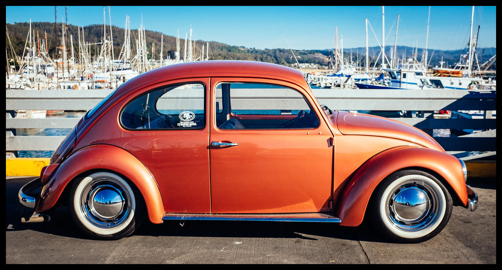 Beetle - Princeton Harbor - 2013