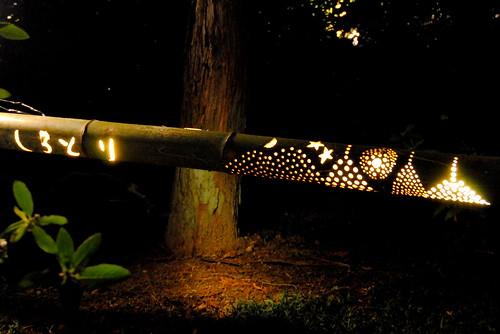 Shirotori Fall Lightup 104r