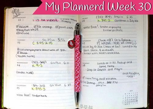 My Plannerd Week 30
