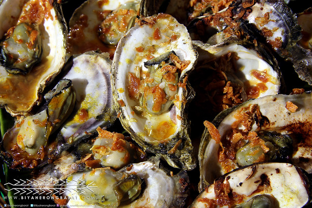 Oysters Roxas City Capiz seafood