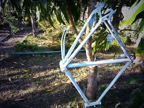 Single speed bike build frame undercoat by andrewgillsag