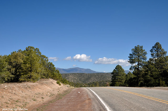 NM_roadside_web