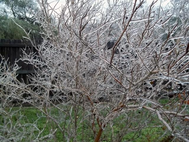 Winter storm '14 III
