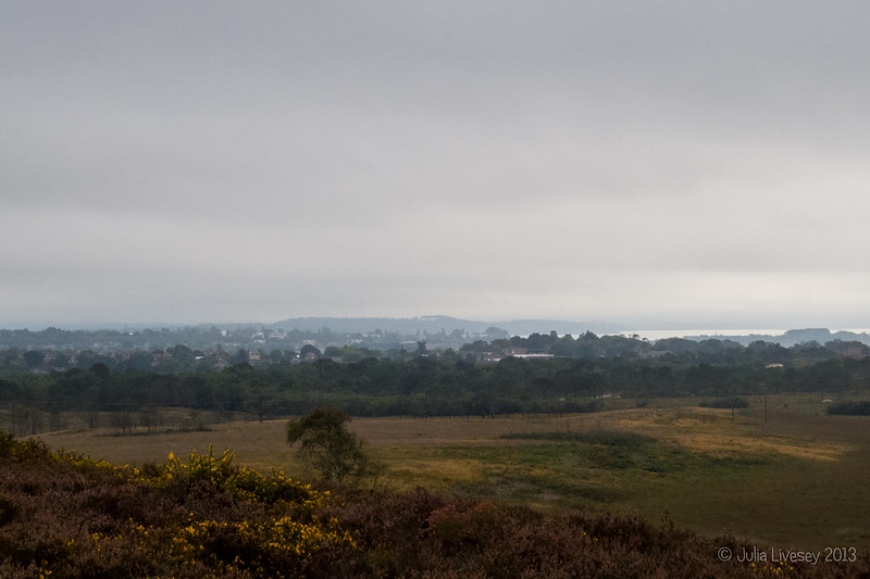 View across Upton Heath to Hamworthy and Arne