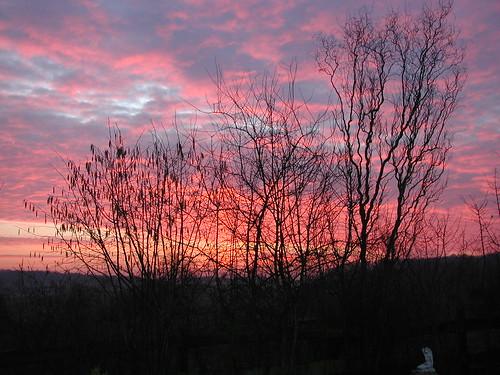 20040305_sunset3