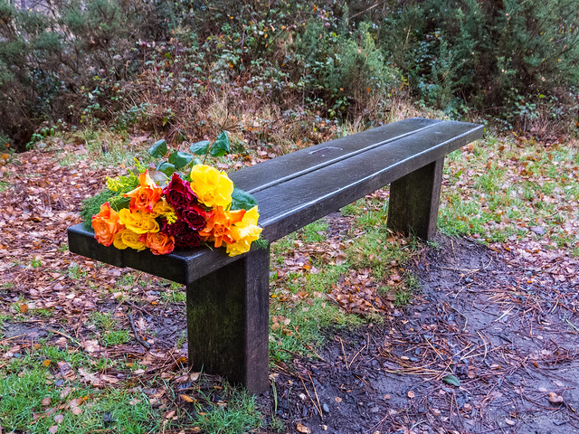 Janet has left flowers on her husband's memorial bench