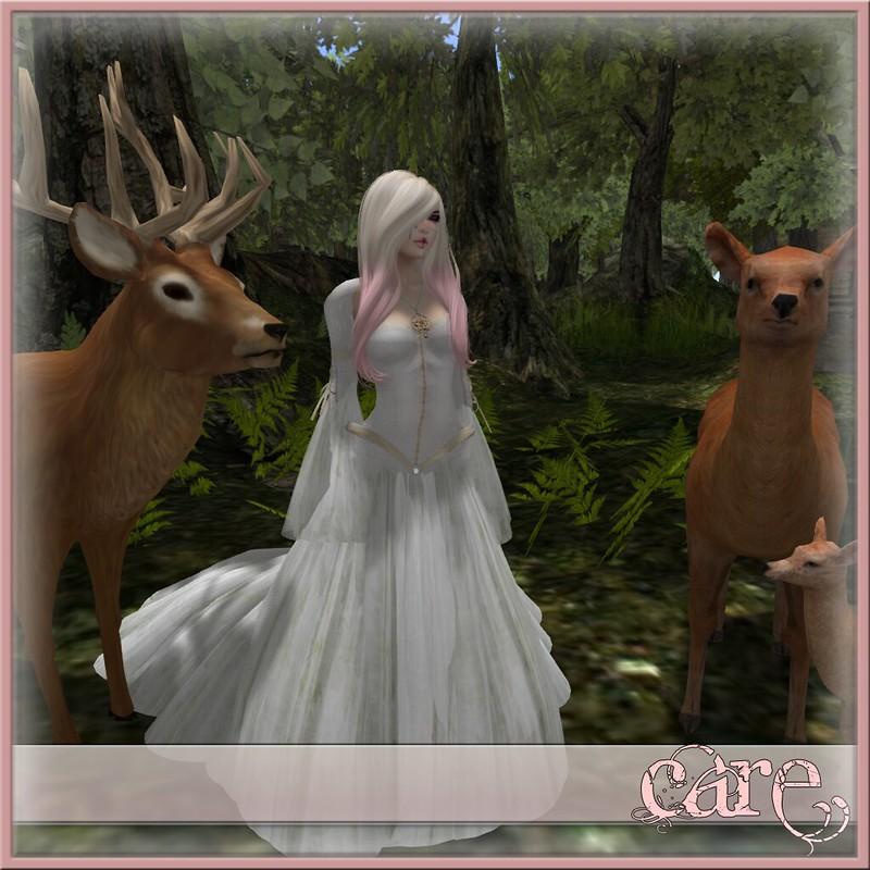 BlogPost_44A