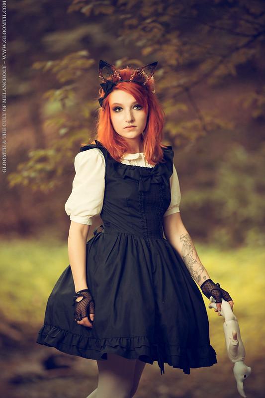 The Princess & The Fox