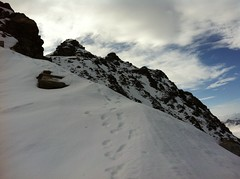 Aufstieg Napfspitze, Gipfel in Sicht