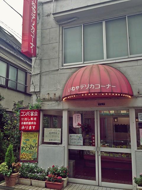Ineya Waseda