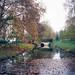 Poissy - Parc Messonier 12