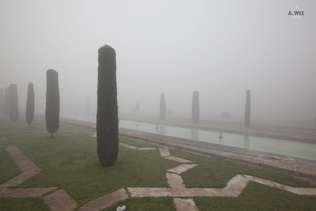 Gardens of the Taj Mahal in Fog