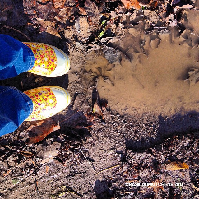 "Nov 3 - p is for ... ""Puddle"" #fmsphotoaday #puddle #mud #leaves #fall #autumn"