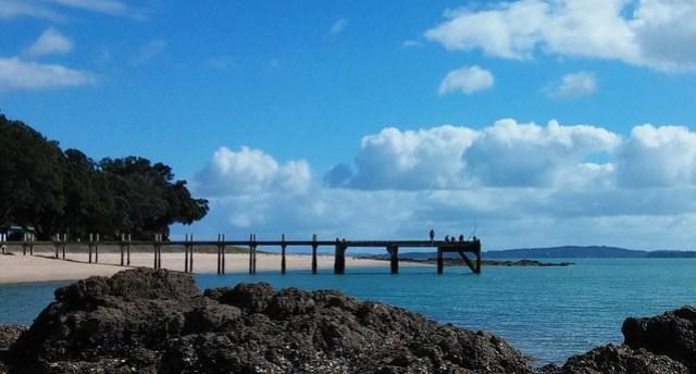 Magazine Bay/Waimanu , Pohutakawa Coast