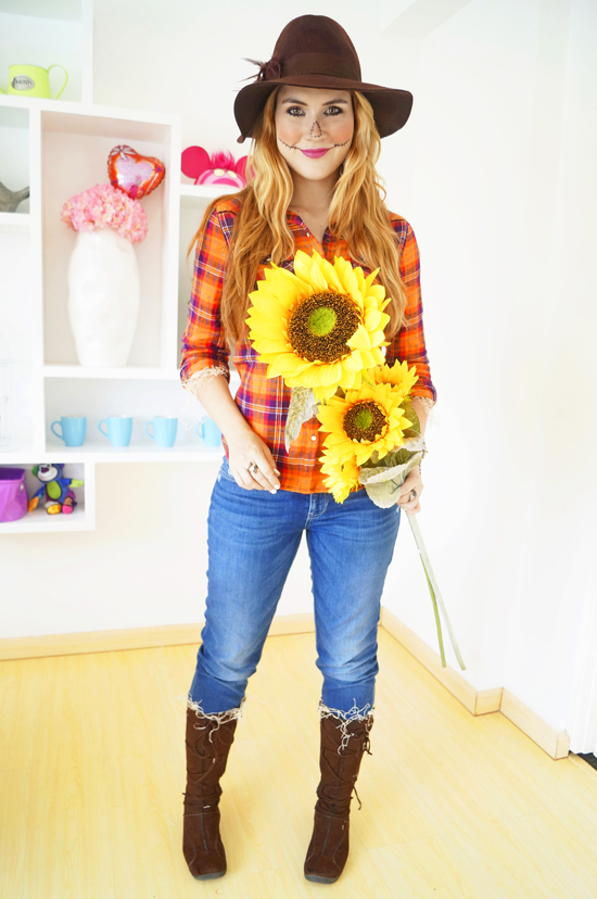 Image result for scarecrow diy costume