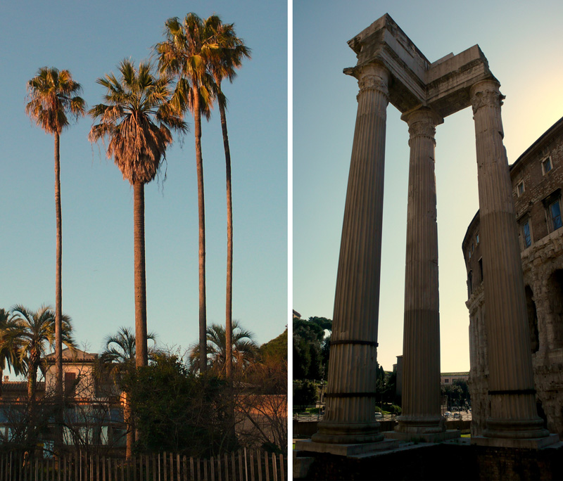 Columns and palms