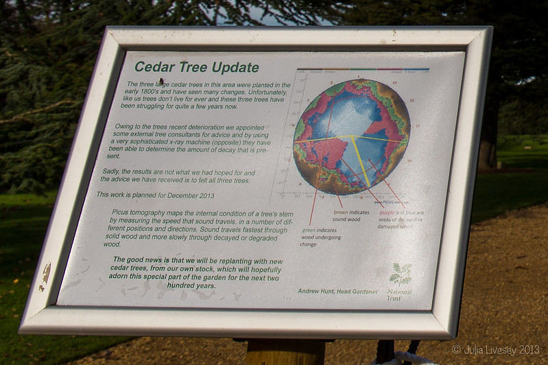 Notice about the cedars