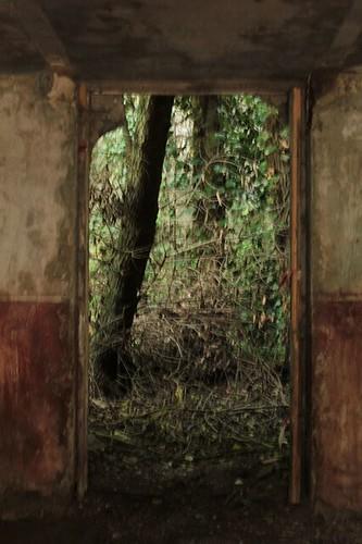 antico mulino: porta sul retro
