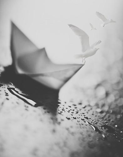 ~ Set Sail ~