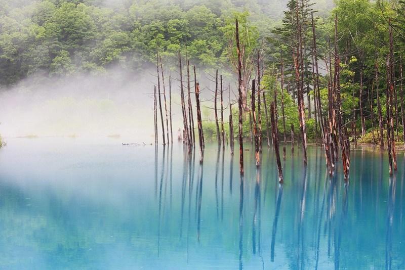青池,美麗中帶著淡淡的哀傷