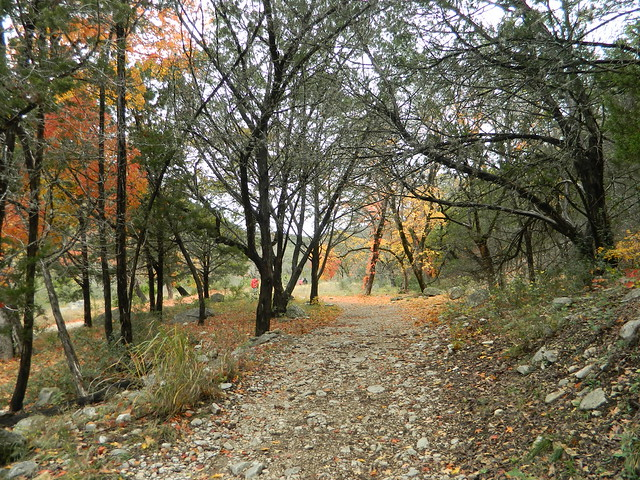 lost maples and path through park