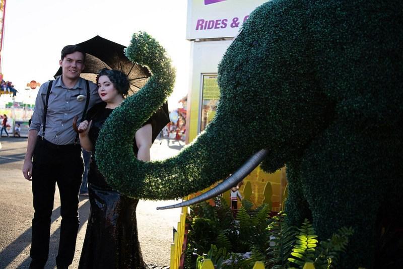 Elephant shrubbery