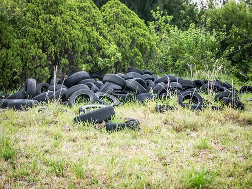 Illegal Tire Dump-004