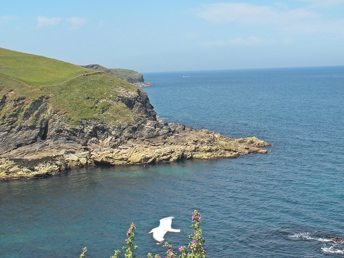 gorgeous views - Port Isaac