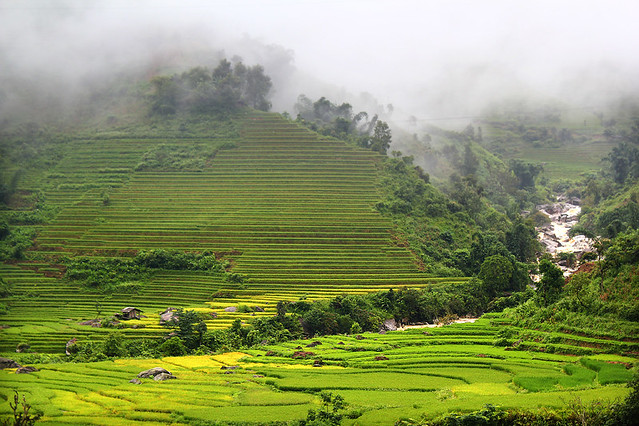 On the way from Lao Cai to Sapa