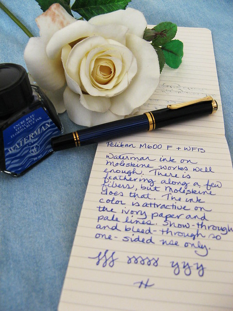 Moleskine, Pelikan M400, and Waterman Florida Blue ink