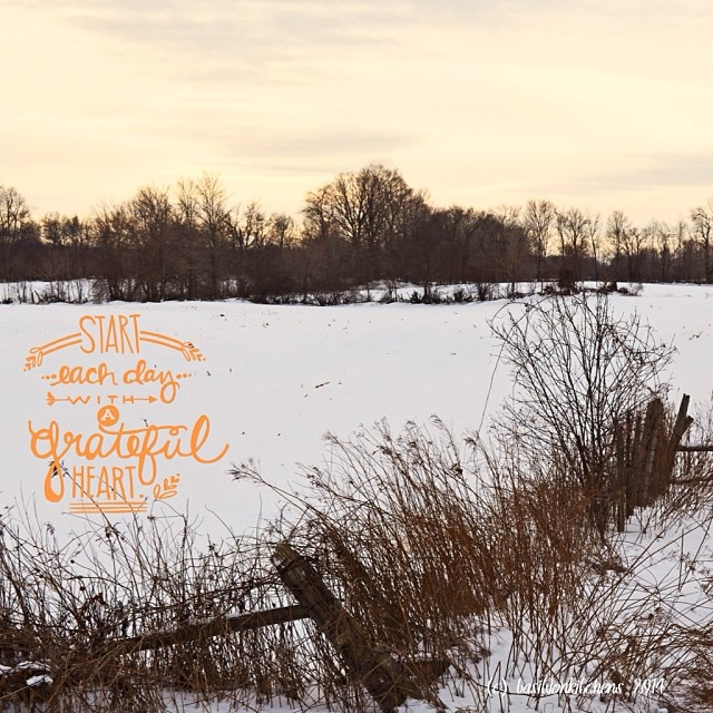 1/1/2014 - resolution {I resolve to start each day with a grateful heart} #photoaday #resolution #princeedwardcounty #rural #winter