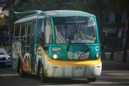 green whale bus