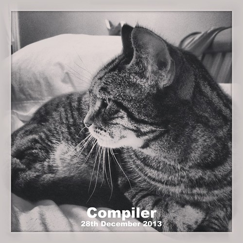 Compiler the Cat