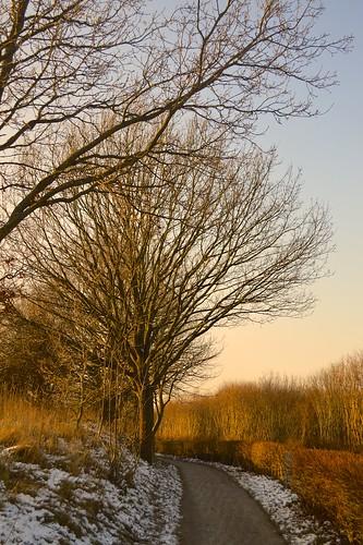 Along the Way by Madeleine Winnett