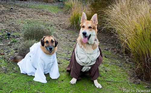 Leia and Obi-Wan