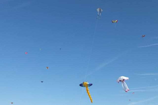 Kites Festival of Wind