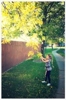 Leaf Hunt!