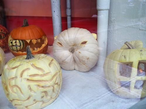 Lucy pumpkin style