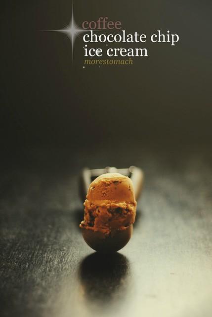 Coffee Chocolate Chip Ice Cream