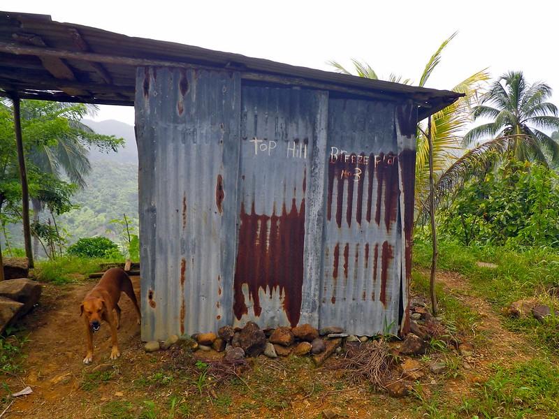 Carib accom