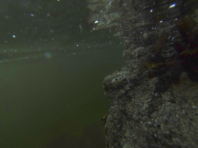 Air Bubbles and Rock Wall Underwater