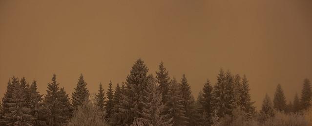 Holmenkollen & Tryvann #06