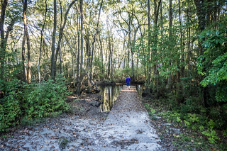 South Edisto River-004